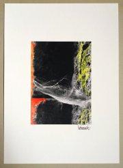 Kunstfotografie Spinnweben 1