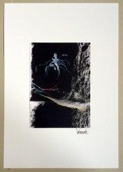 Kunstfotografie Spinnweben 2